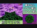 ジュゲムが1番強かった スーパーマリオ64DS実況プレイ FINALE