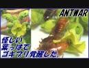 第88位:怪しい葉っぱを栽培してゴキブリに与えたら異常なほど覚醒した。