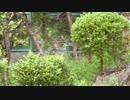 第87位:雨の降る音【作業用BGM】