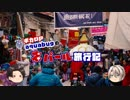 【ゆっくり】旅動画「ネパール編」第8話【aquabugの旅動画】