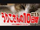 うりこさんの10日間 - 2019#15