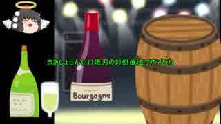 「ゆっくり解説」 世界の酒