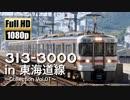 【JR東海】313系3000番台 in 東海道線 ~Collection Vol.01~
