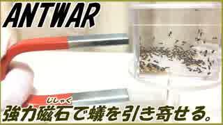 砂鉄入りお砂糖を食べたアリを磁石で引き寄せることは可能?