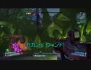 【ボーダーランズ2】DLC5ラスボス・Hectorを倒せないマヤ使い全てに捧ぐ