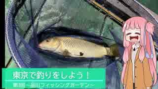 東京で釣りをしよう!~第三回 品川フィッシングガーデン~