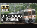 【JR東海】313系3000番台 in 東海道線 ~Collection Vol.03~