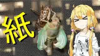 【セミ】双葉杏は怠惰に食べる【前編】