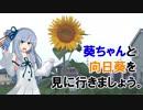 【ひまわりの日】葵ちゃんと向日葵を見に行きましょう。【VOICEROID車載】