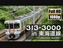 【JR東海】313系3000番台 in 東海道線 ~Collection Vol.04~