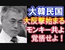 【海外の反応】韓国頑張れ!日本に反撃せよ!【世界の反応】