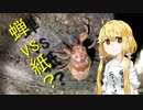 【セミ】双葉杏は怠惰に食べる【後編】