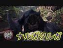 【MHW:IB】相棒ハンターとナルガクルガ(ゆっくり実況)
