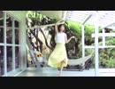 【踊ってみた】さようなら、花泥棒さん【きゅう】