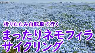 【ミニベロ】まったりネモフィラサイクリング【ポタリング】
