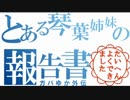 【バイオハザードRE2】とある琴葉姉妹の報告書【P17】