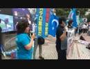 2019年07月21日 WhiteBlue19 ウイグル支援 世界同時デモ 東京集会