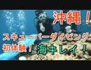 【初体験】海の中はキレイ!沖縄でスキューバーダイビング!そして中耳炎となる…(YouTubeで『てぃかし』を検索!)