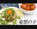【妄想ADV風】ごま油香る豆苗ポテチャーハン、あーんど、ばりばり食感チキンサラダ【天気の子】