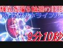 """【PSO2】PhのARで """"輝光を屠る輪廻の徒花""""(9分10秒)"""