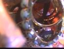 惑星ループ/ナユタン星人