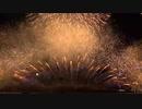 2019.8.10 (大阪) なにわ淀川花火大会 グランドフィナーレ ~なにわの夜空に金銀大瀑布~