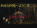 地獄の初見縛り【ダークソウルリマスター】part11