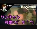 【実況】マスターモードでやりこみサバイバル生活!! Part10 【ゼルダの伝説 BotW】