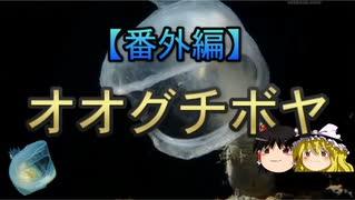 【番外編】変な生き物 part4