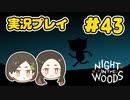 暗闇の中でゴミ山巡り!【NIGHT IN THE WOODS】#43