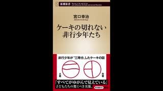 【 新潮新書 】 ケーキの切れない非行少年たち 【 宮口 幸治 】