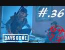 【DaysGone】ヘタレゴーン【初見実況】#.36