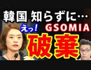 韓国民「GSOMIAなんて破棄だ!ところでGSOMIAって何だ?」韓国人は知らずに日本を批判していたのか!マジか…w【KAZUMA Channel】