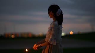 【夏の終わりに】夏恋花火 踊ってみた【茄子ぽめ】