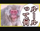 【実況】サルから学ぶルールの意味