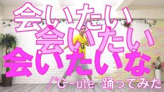 【ぽんでゅ】会いたい 会いたい 会いたいな/℃-ute踊ってみた【ハロプロ】