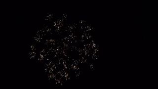 2019.8.31(秋田)大曲の花火 「時代を歩む白水仙 ~共に生きる~」