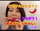 早川亜希動画#652≪辛い?うまい?香辛子【こうがらし】のお味をレポート!≫