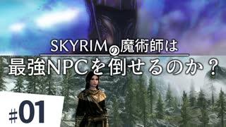 SKYRIMの魔術師は最強NPCを倒せるのか?【ゆっくり実況】