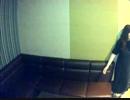 【うたスキ動画】永久パラダイス/キタコレ(cv.小野大輔、岸尾だい…【みんみん♪】