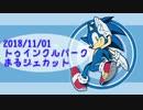 ソニックアドベンチャーDX ソニック編 RTA 43:49.59 解説動画補足
