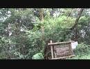 【結月ゆかり・KAITO】自然音ですって【トークロイド】