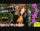 【FF8】モルボル食べまくり120分【セルフィ】