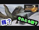 【MHP2G】暇つぶしにまったりのほほん実況プレイ #11