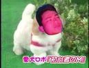 愛犬ロボ「初心者のM」