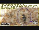 【テラフォーマー再現】ミイデラゴミムシを100匹のゴキブリの中に入れると・・・。【混ぜるな危険】