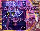 【実況】東方を10ミリも知らない僕が弾幕STGに挑戦【紺珠伝】 4