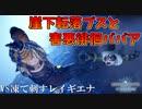 【MHWI】徘徊BBAを救う為に凍て刺すレイギエナを狩らねばならない人参おじさん