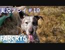 ファークライ5【ジョン・シード篇】実況プレイ#10
