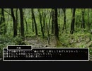 『幻想入りシリーズ』中学生が幻想入り2期 12話[第2期完](東方中坊人)